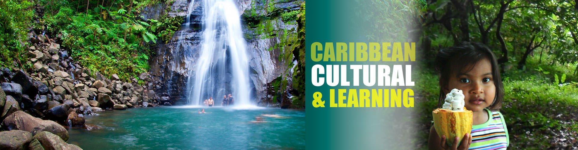 Caribbean Cultural & Learning