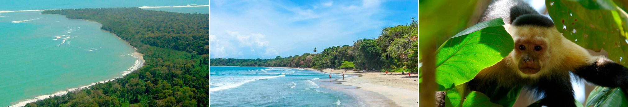 Tuesday  & Friday Tour of the Day! Cahuita National Park Hike & Waterfall